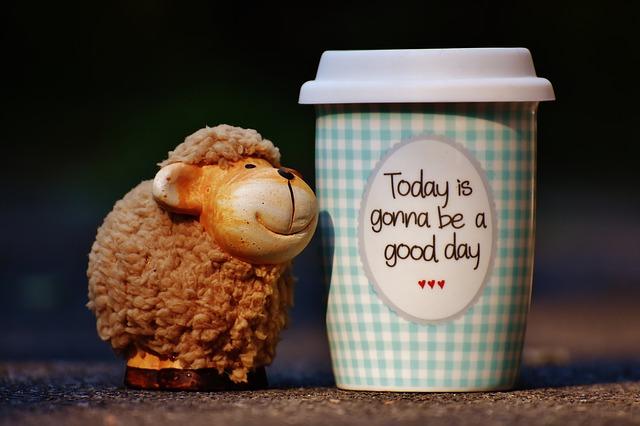 sheep-1644146_640.jpg